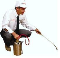 Pest Control Services NY, NJ